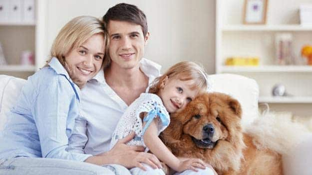 Wills & Trusts dog-young-family Direct Wills Headingley